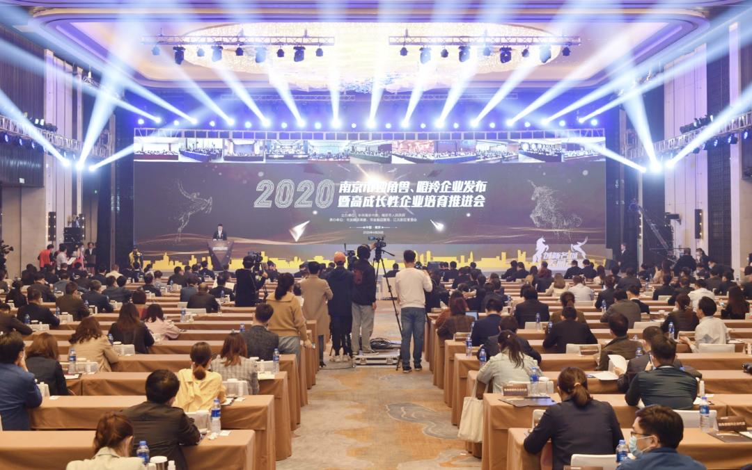 迪塔维数据晋升南京市瞪羚企业榜单